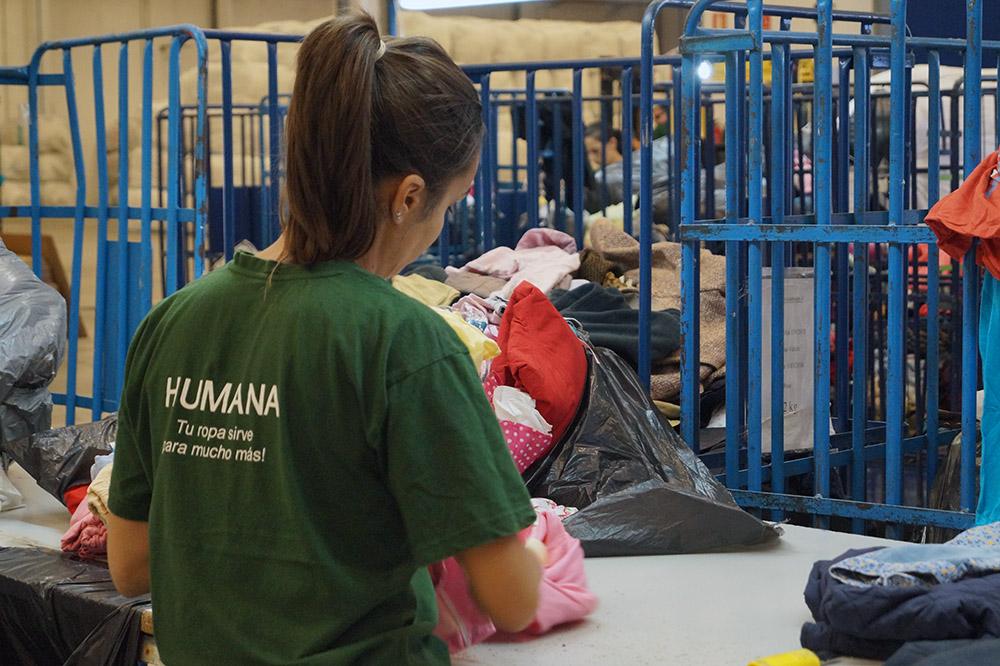 Humana_clasificación
