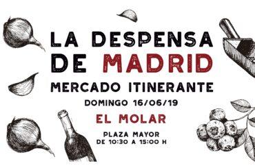 La Despensa de Madrid, el mercado itinerante de los Alimentos de Madrid, llega el 16 de junio a El Molar