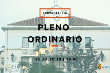 Convocatoria de pleno ordinario: 25 de julio de 2019 a las 19h