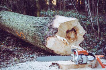 Matinsa convoca plazas para las cuadrillas de prevención-extinción de Incendios Forestales durante la campaña de Alto Riesgo 2021