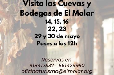 Visita las Cuevas y Bodegas de El Molar